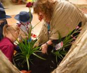 A teacher helping the children plant flowers